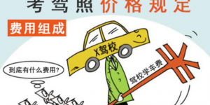 哈尔滨考驾照大慨多少钱?插图