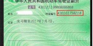 机动车驾驶证档案编号插图